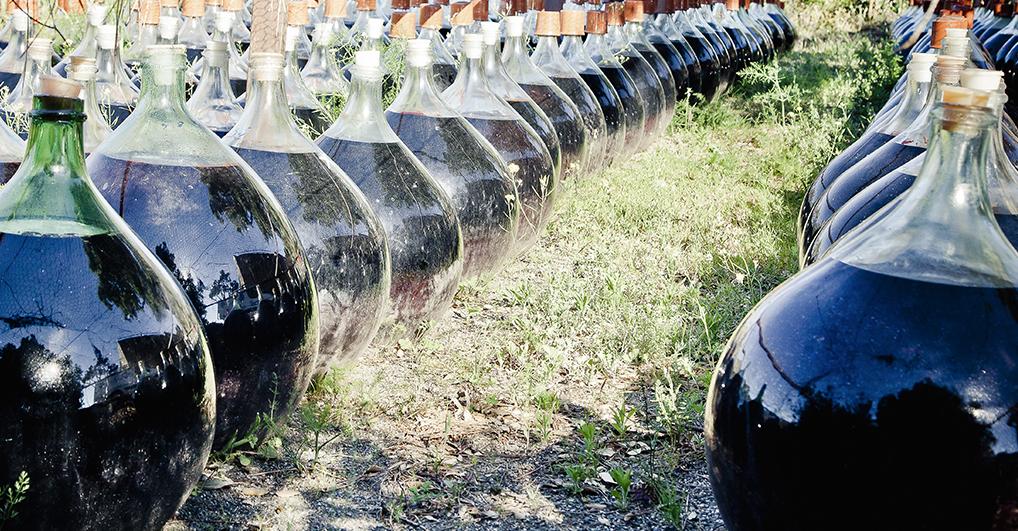 photo-sens-et-vins9